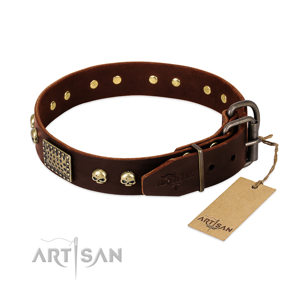 Rust resistant studs on basic training dog collar