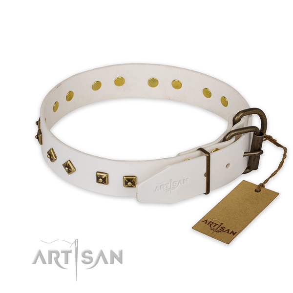 Reliable hardware on genuine leather collar for daily walking your four-legged friend