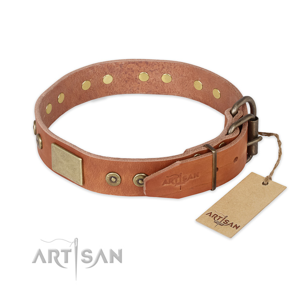 Reliable fittings on full grain natural leather collar for basic training your four-legged friend