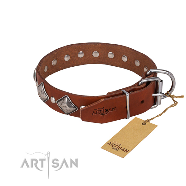 Fancy walking studded dog collar of quality genuine leather