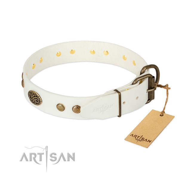 Rust resistant adornments on leather dog collar for your canine