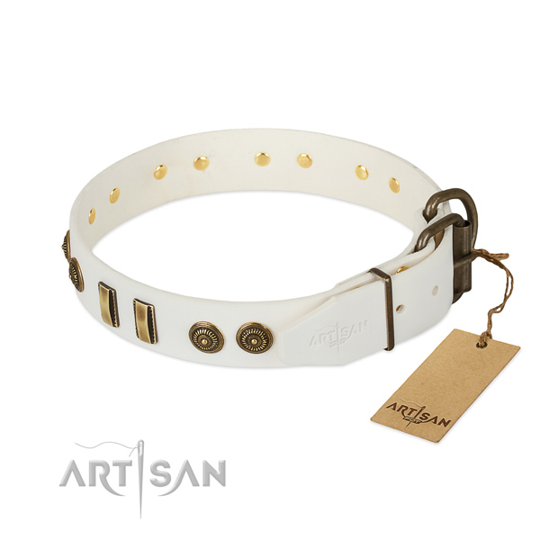 Reliable embellishments on genuine leather dog collar for your canine