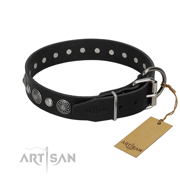 High quality full grain leather dog collar with impressive adornments