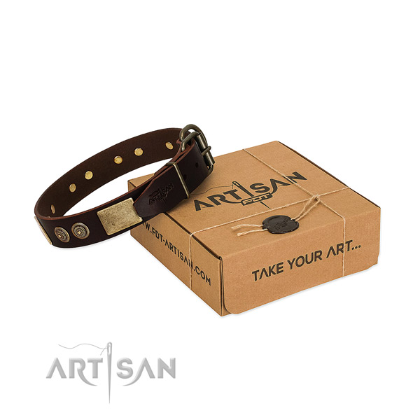 Rust resistant adornments on leather dog collar for your pet