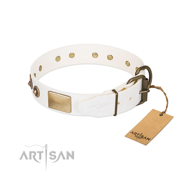 Rust-proof adornments on leather dog collar for your four-legged friend
