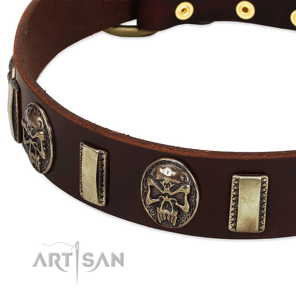 Durable decorations on leather dog collar for your pet