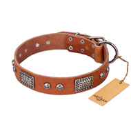 """Sparkling Skull"" FDT Artisan Tan Leather Collie Collar with Old Silver Look Plates and Skulls"
