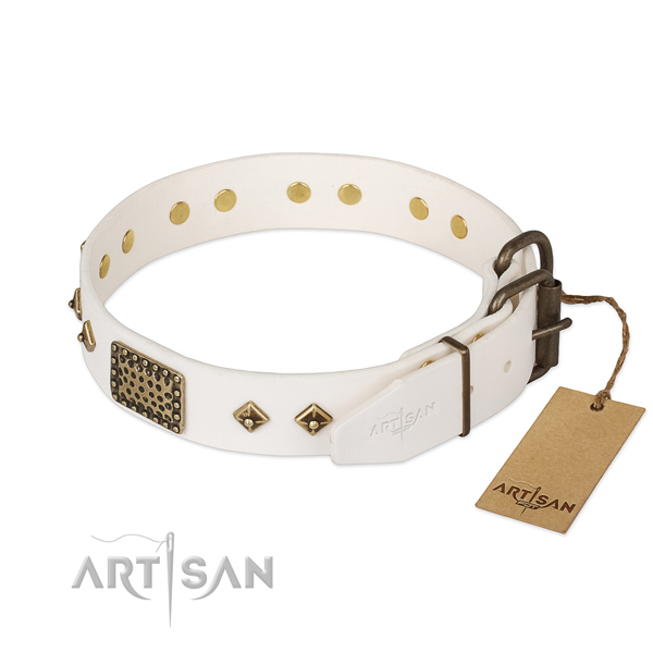 Genuine leather dog collar with strong fittings and decorations