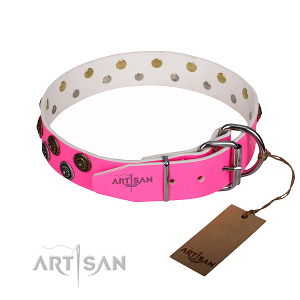 Stylish walking studded dog collar of top quality full grain natural leather
