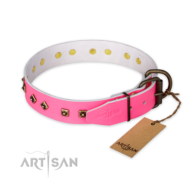 Strong fittings on leather collar for fancy walking your canine