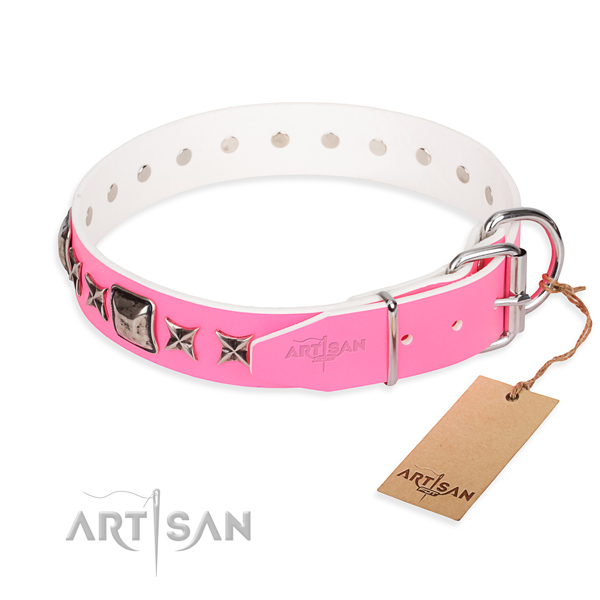 Strong studded dog collar of genuine leather