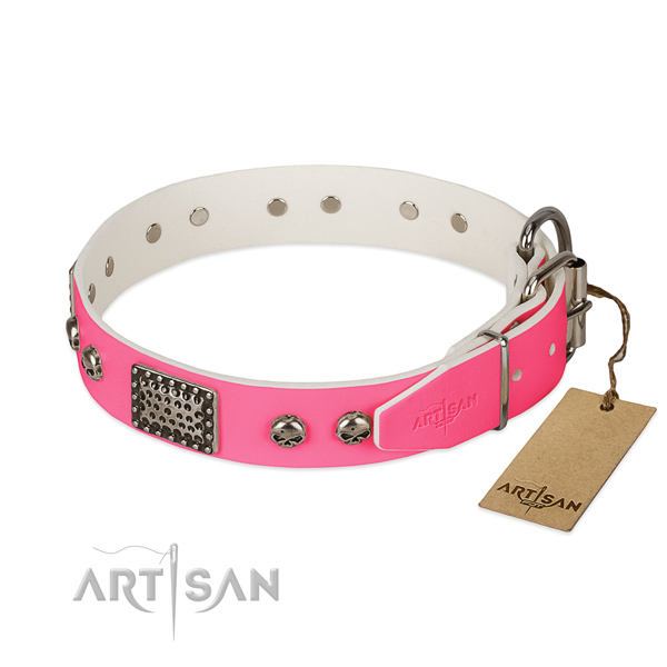 Reliable adornments on everyday walking dog collar