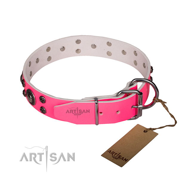 Basic training adorned dog collar of best quality full grain leather