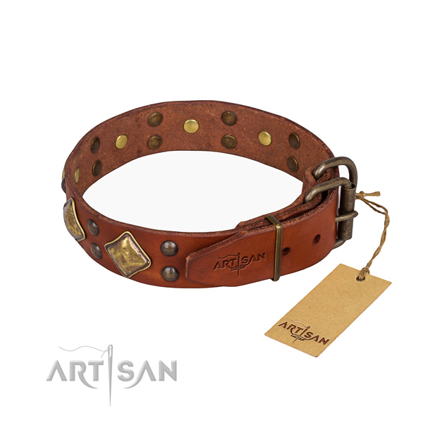 Full grain leather dog collar with fashionable strong embellishments