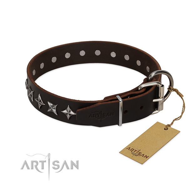 Stylish walking adorned dog collar of finest quality genuine leather