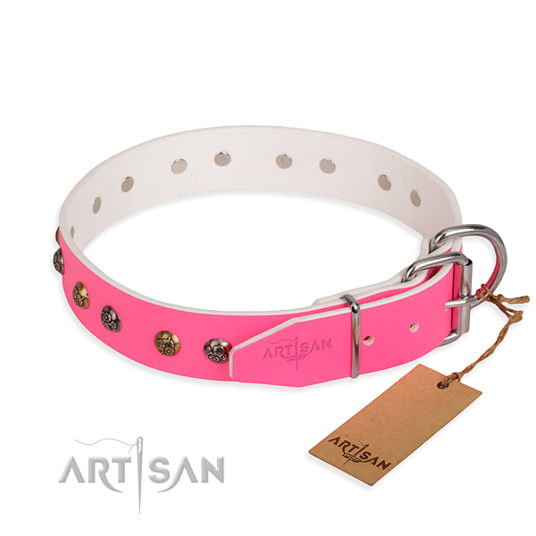 Full grain natural leather dog collar with remarkable strong adornments