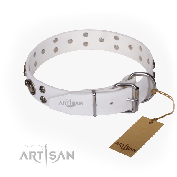 Fancy walking embellished dog collar of top quality full grain leather