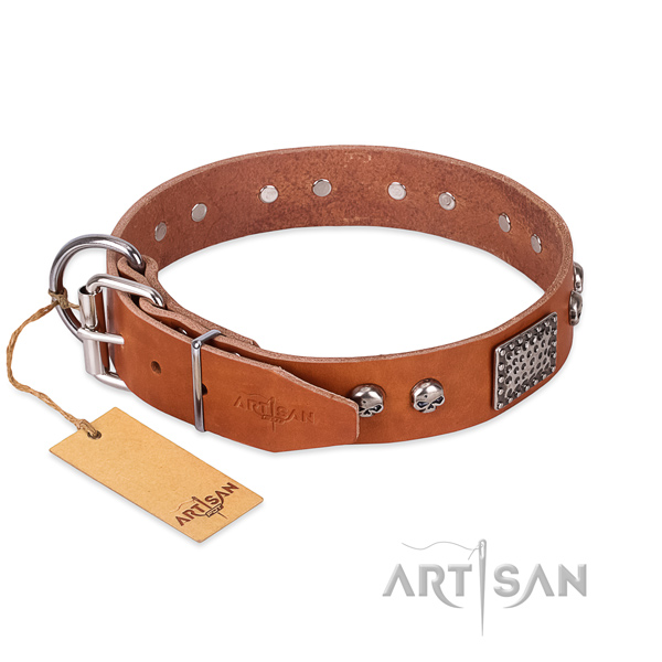 Rust resistant studs on daily use dog collar