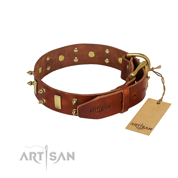 Everyday use embellished dog collar of fine quality full grain natural leather