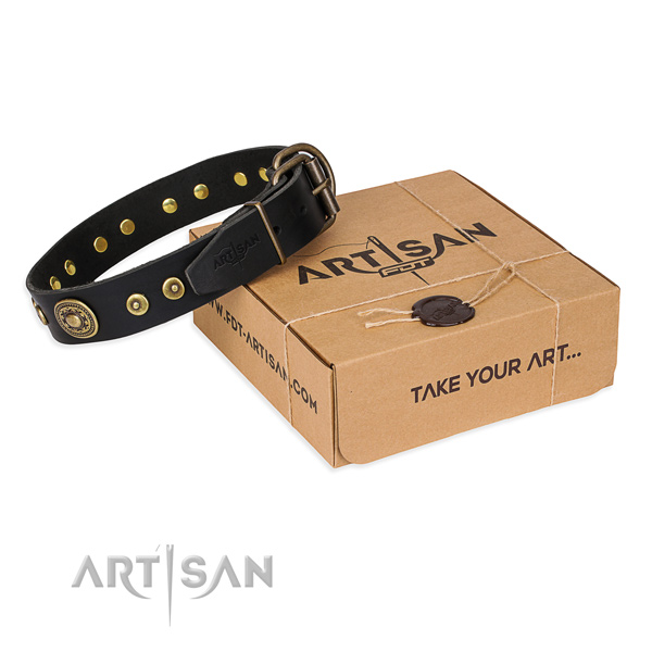 Full grain genuine leather dog collar made of best quality material with corrosion resistant buckle