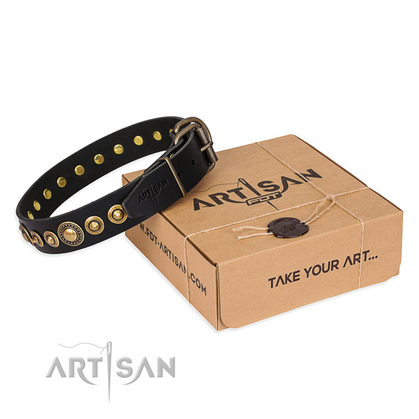 Top notch full grain leather dog collar created for handy use