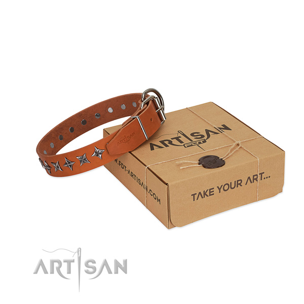 Best quality full grain natural leather dog collar with stylish studs