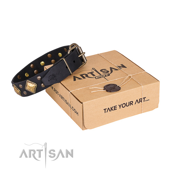 Handy use dog collar with Fashionable rust resistant embellishments