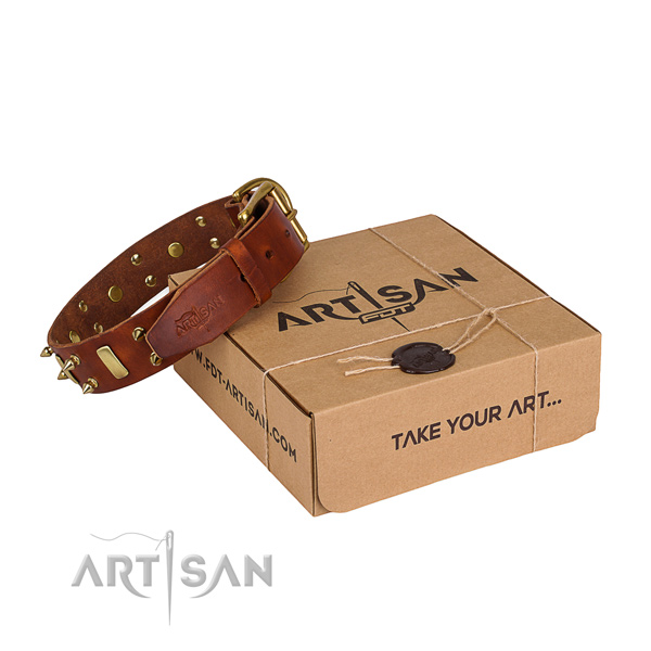 Easy wearing dog collar of finest quality full grain genuine leather with embellishments