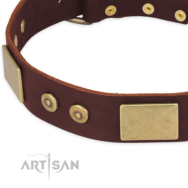 Leather dog collar with decorations for easy wearing