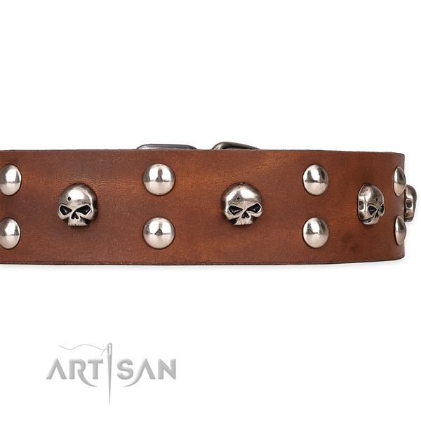 Comfortable wearing decorated dog collar of fine quality natural leather
