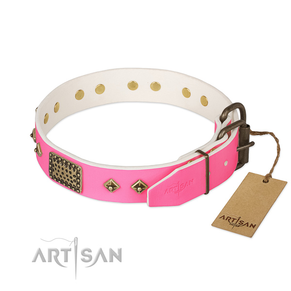 Corrosion proof traditional buckle on walking dog collar