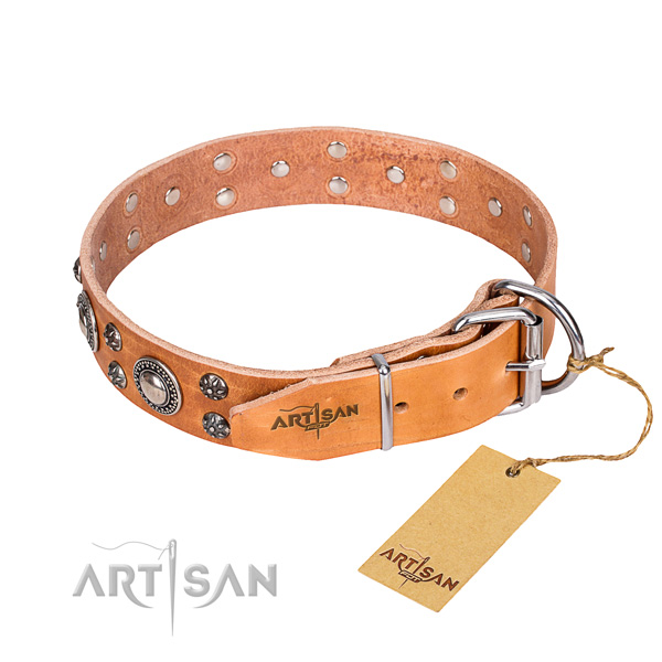 Fancy walking adorned dog collar of fine quality full grain genuine leather