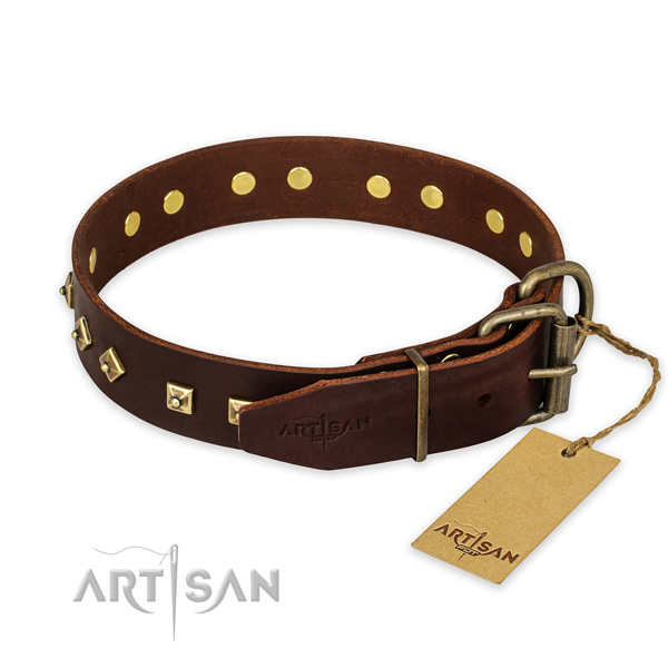 Reliable hardware on full grain leather collar for walking your canine