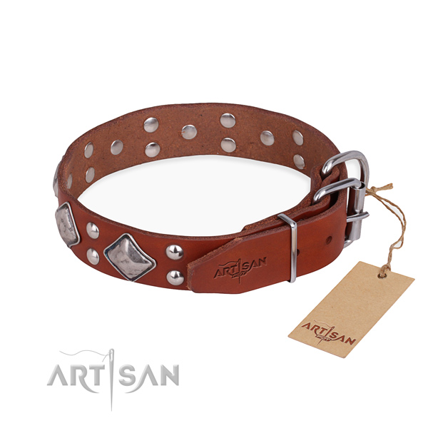 Genuine leather dog collar with fashionable reliable adornments
