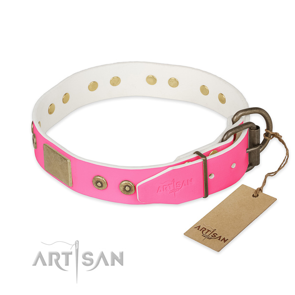 Rust-proof hardware on stylish walking dog collar
