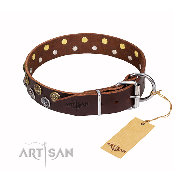 Everyday use studded dog collar of top quality leather