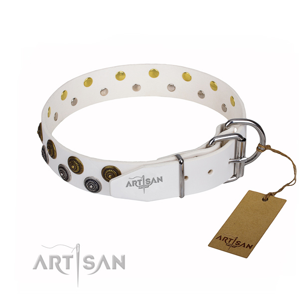 Everyday use adorned dog collar of fine quality leather
