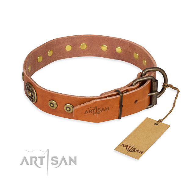 Leather dog collar made of top notch material with rust resistant embellishments