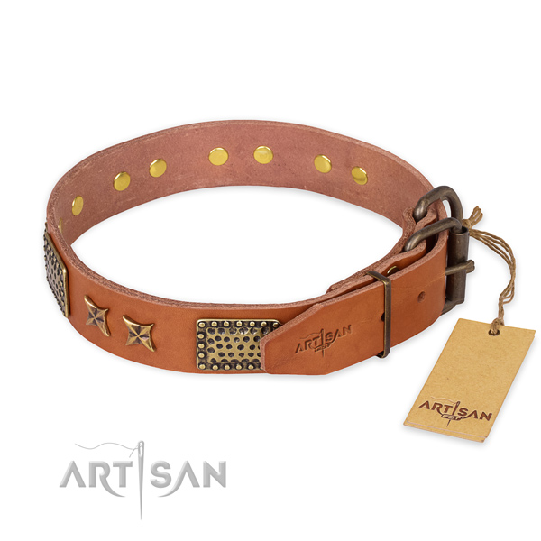 Strong D-ring on leather collar for your lovely pet