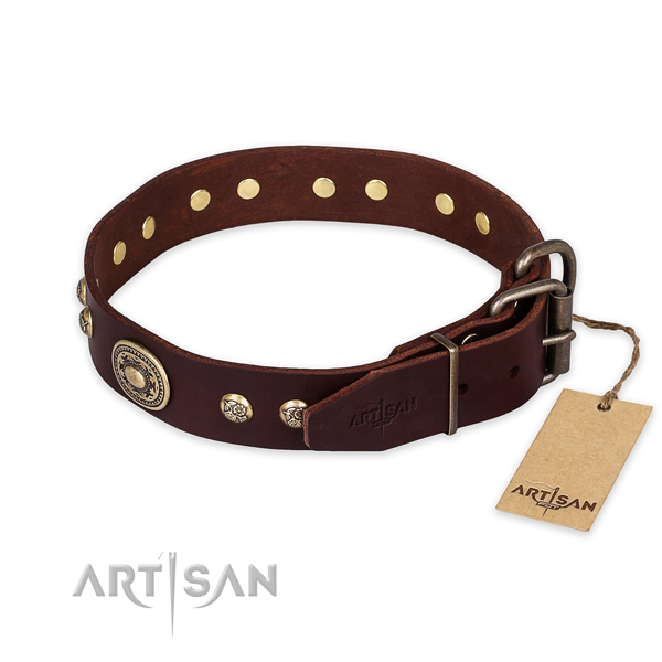 Durable buckle on leather collar for walking your pet