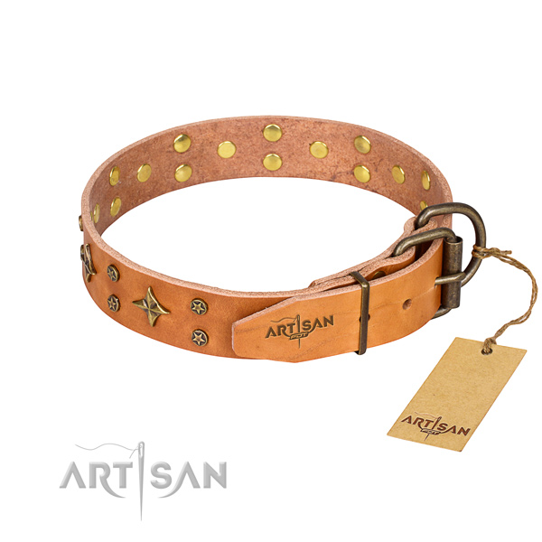 Stylish walking embellished dog collar of quality leather