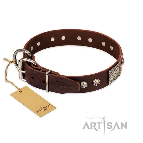 Rust resistant D-ring on everyday walking dog collar