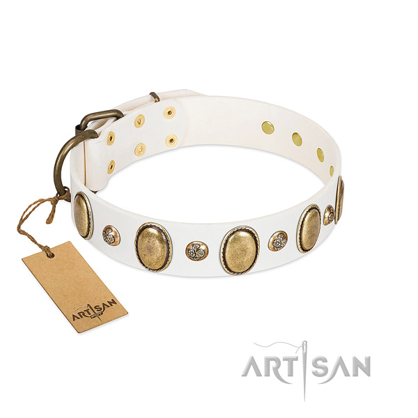 Natural leather dog collar of gentle to touch material with unusual embellishments