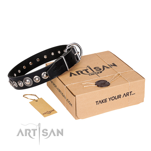 Walking natural leather dog collar with decorations