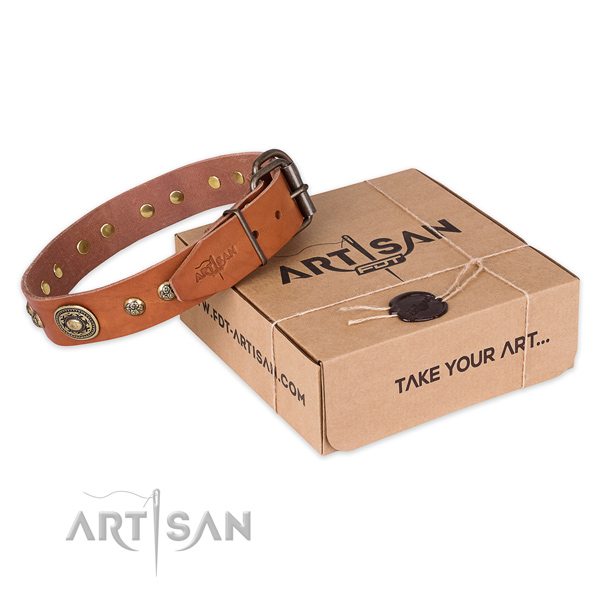 Rust-proof traditional buckle on leather dog collar for fancy walking