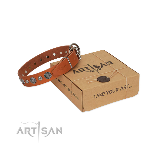Full grain natural leather collar with rust resistant fittings for your attractive pet