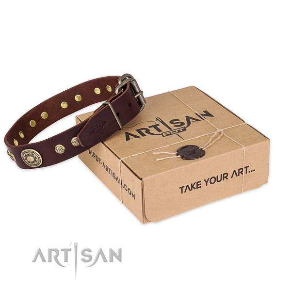 Durable hardware on leather dog collar for comfortable wearing
