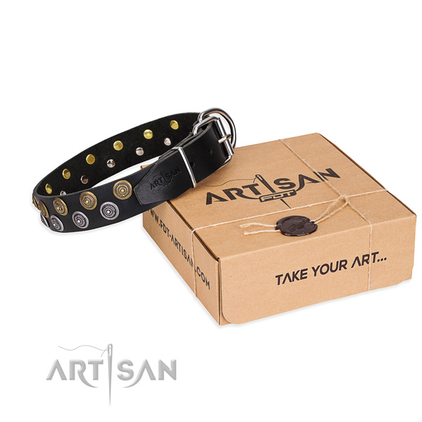 Basic training dog collar of top notch leather with embellishments