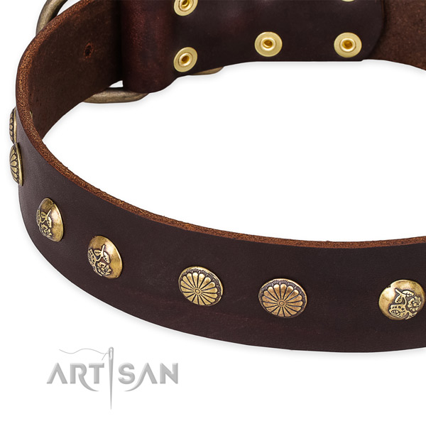 Genuine leather collar with rust resistant buckle for your impressive canine