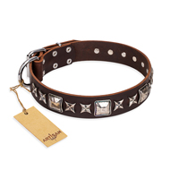 """Perfect Impression"" FDT Artisan Brown Leather Collie Collar with Silvery Square Studs"